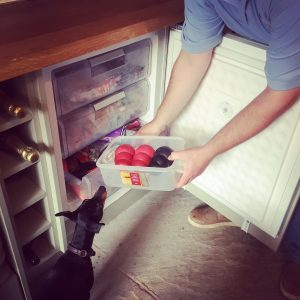 Place the Kongs in the freezer