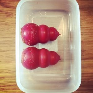 Place the stuffed Kongs in a lunch box.