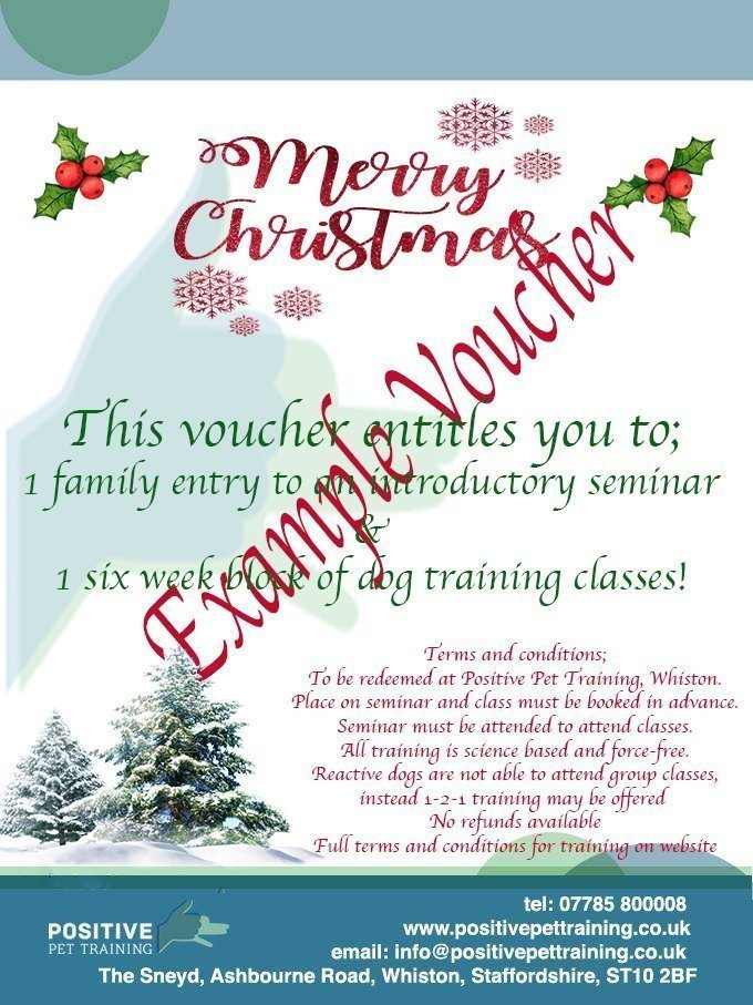 Christmas dog training voucher