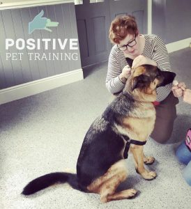 Ethical and behavioural approach to medicine in dogs